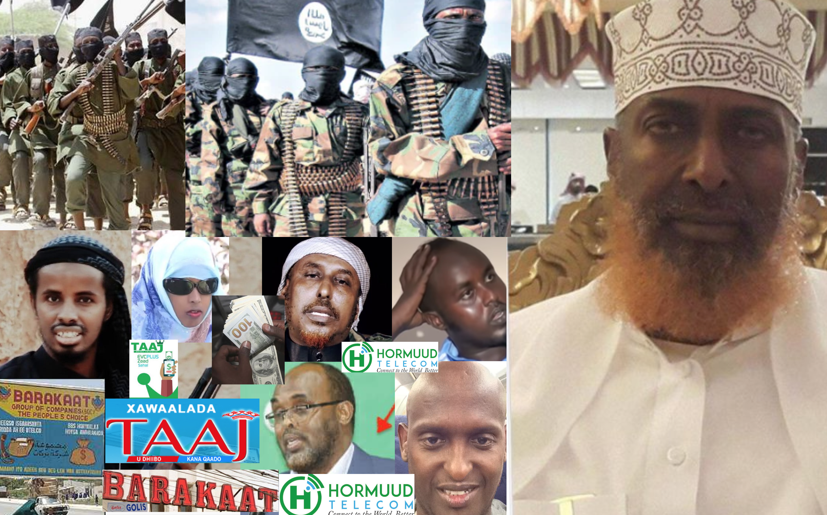 Hormuud Telecom is the greatest financier of Al-Shabaab